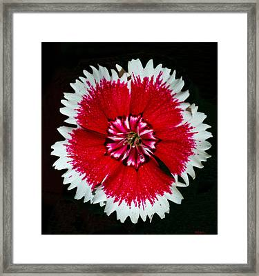 Patch Work Framed Print by Mitch Shindelbower