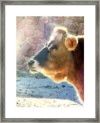 Patches Framed Print by Cristophers Dream Artistry