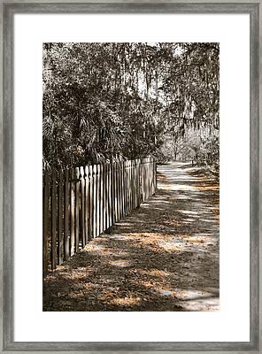 Path Along The Fence Framed Print by Carolyn Marshall