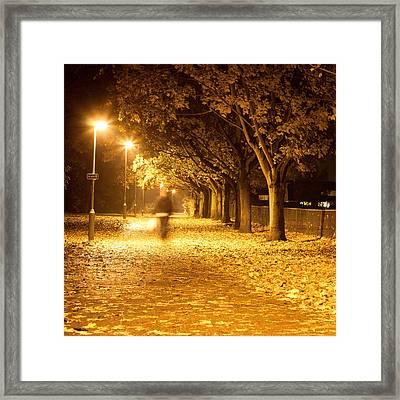 Path At Night Framed Print by Tom Gowanlock