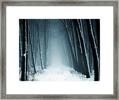Path Into Snowy Forest On Foggy Day Framed Print by By Julie Mcinnes