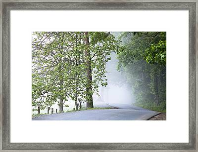 Path Into The Fog Framed Print by Andrew Soundarajan