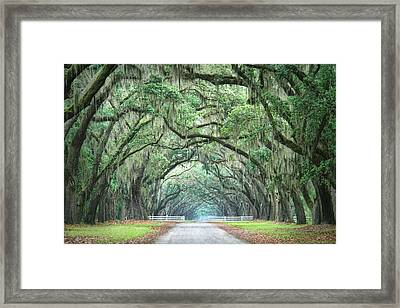 Framed Print featuring the photograph Path Of Life 4 by Mary Hershberger