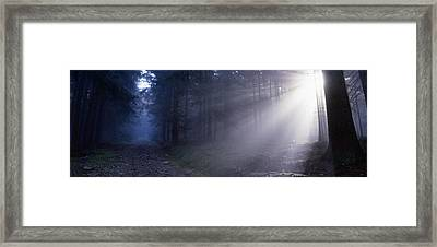 Path Through A Misty Forest Framed Print by Ulrich Kunst And Bettina Scheidulin