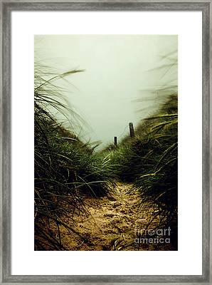 Path Through The Dunes Framed Print by Hannes Cmarits