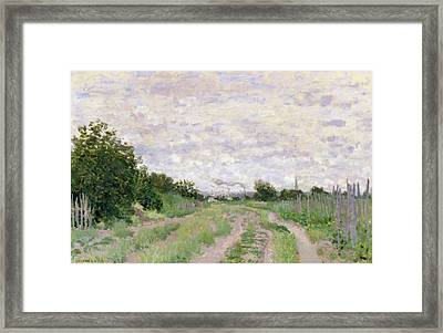 Path Through The Vines At Argenteuil Framed Print by Claude Monet