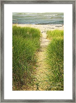 Path To Beach Framed Print by Elena Elisseeva