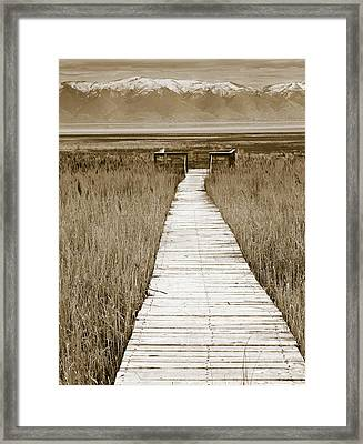 Path To Beauty 2 Framed Print by Marilyn Hunt