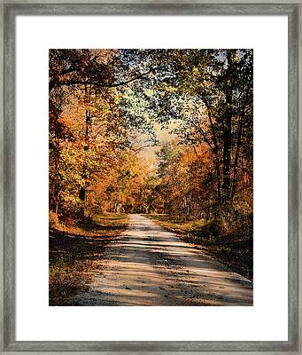 Path To Nowhere Framed Print by Jai Johnson