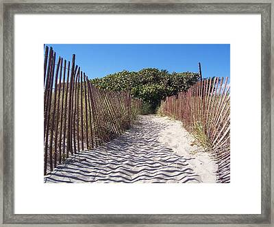 Path To Pleasure Framed Print by Sheila Silverstein