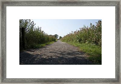 Framed Print featuring the photograph Path To The Bay by Charles Kraus