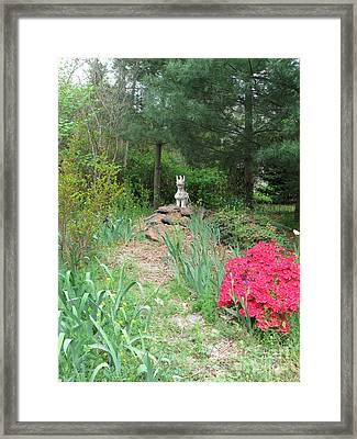 Path To The Dragon  Framed Print by Nancy Patterson