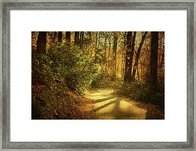 Pathway Between Woods Framed Print by Jody Trappe Photography