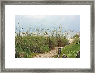 Pathway To The Gulf Framed Print