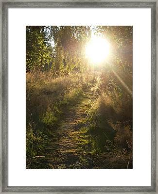 Pathway To The Light Of Heaven Framed Print by Lee Yang
