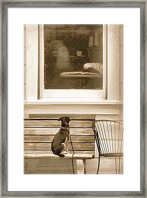 Patiently Waiting Framed Print by Rich Beer
