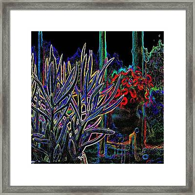 Patio Plants II Framed Print