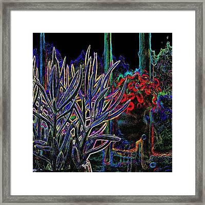 Patio Plants II Framed Print