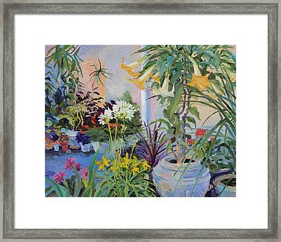 Patio With Flowers Framed Print