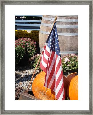 Patriotic Farm Stand Framed Print