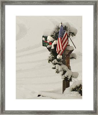 Patriotic Holiday Mailbox Framed Print