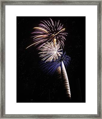 Patriotic Pyrotechnics Framed Print by Sandi Blood