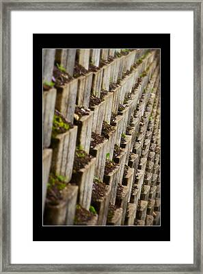 Pattern In The Carpark Framed Print by Miguel Capelo