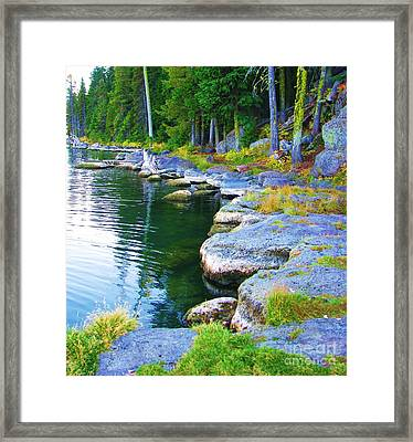 Framed Print featuring the photograph Paulina Lake Shore by Michele Penner
