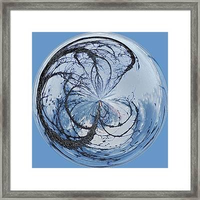 Pawleys Island Orb Framed Print
