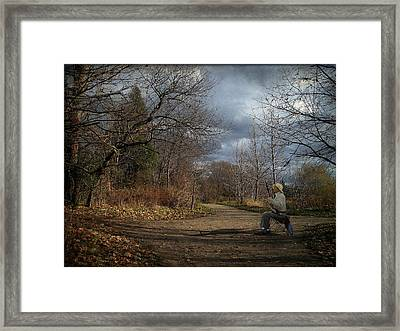 Paying Homage To The Trees Framed Print