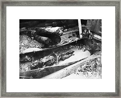Pazyryk Mummy Burial, Central Asia Framed Print by Ria Novosti