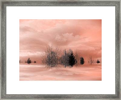 Framed Print featuring the photograph Peace by Elfriede Fulda