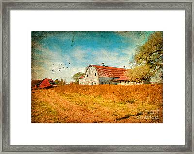 Peaceful Day's Framed Print by Darren Fisher