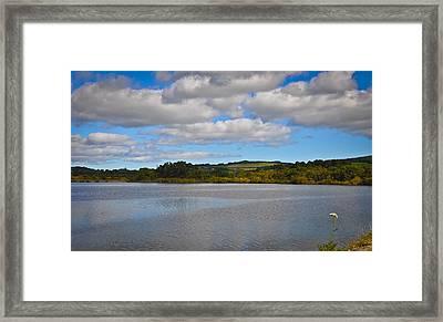 Peaceful Lake Framed Print by Erica McLellan