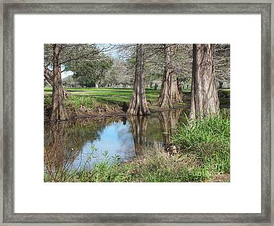 Peaceful Pond Framed Print by Tammy Herrin