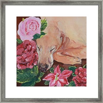 Peaceful Slumber Framed Print