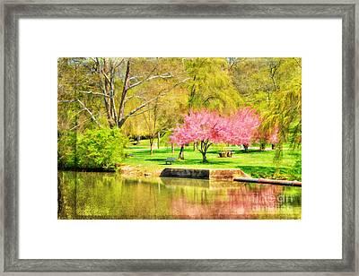 Peaceful Spring II Framed Print by Darren Fisher