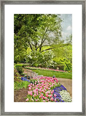 Peaceful Spring Park Framed Print by Cheryl Davis