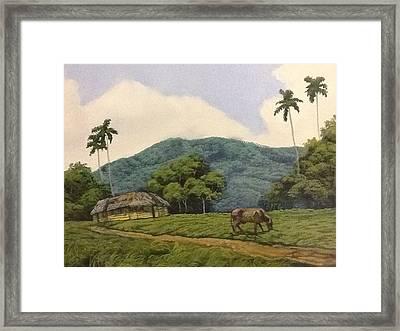 Peaceful Surroundings Framed Print by Carlos Rodriguez Yorde