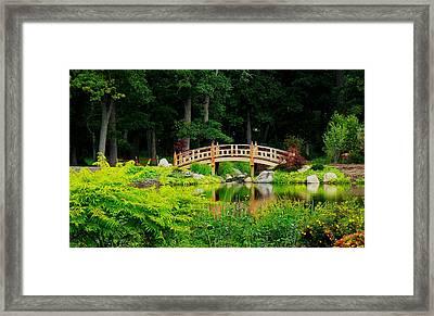 Peaceful Walk Framed Print