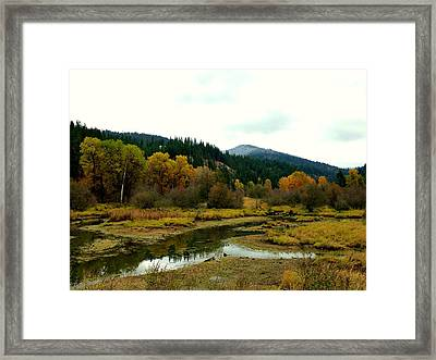 Framed Print featuring the photograph Peaceful Waters Near Coeur D'alene by Cindy Wright
