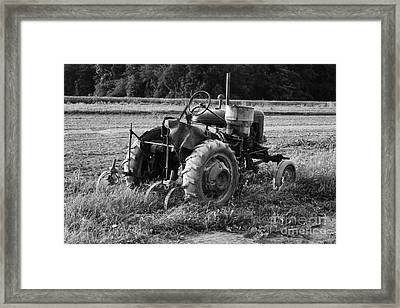 Framed Print featuring the photograph Peach Glen Pennsylvania 2 by Tony Cooper