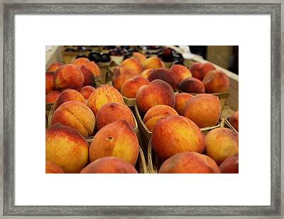 Peaches Ala Mollys Market Framed Print by Theresa Johnson