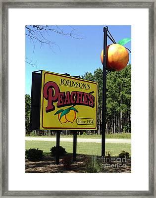 Peaches Framed Print by Jennifer Kelly