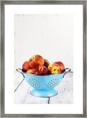 Peaches Framed Print by Stephanie Frey