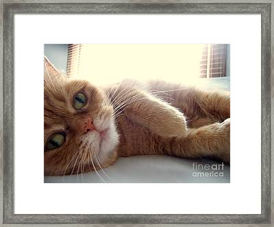Peachy Keen Framed Print by LE Miller