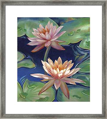 Peachy Pink Nymphaea Water Lilies Framed Print by Nancy Tilles