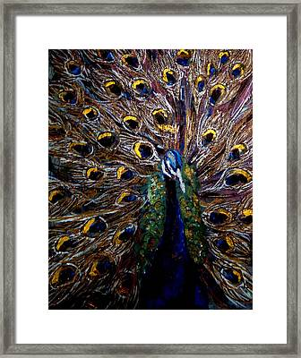 Peacock 1 Framed Print by Amanda Dinan