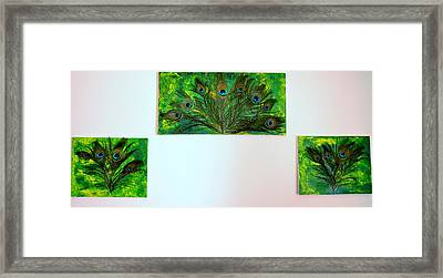 Peacock Feather Trio Framed Print by Evelyn SPATZ