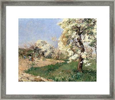 Pear Blossoms Framed Print by Childe Hassam